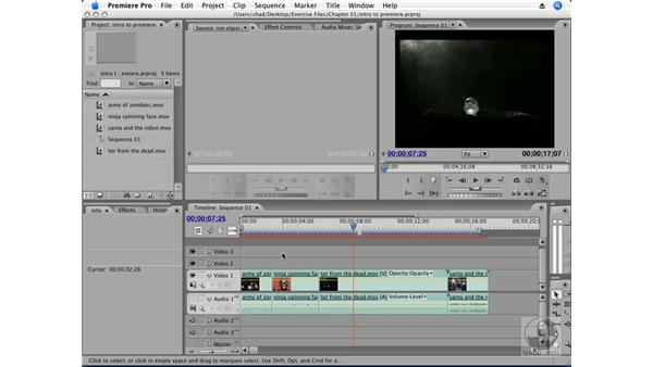 Why use Premiere Pro?: Premiere Pro CS3 Essential Training