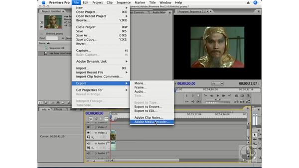 Integrating with Flash: Premiere Pro CS3 Essential Training