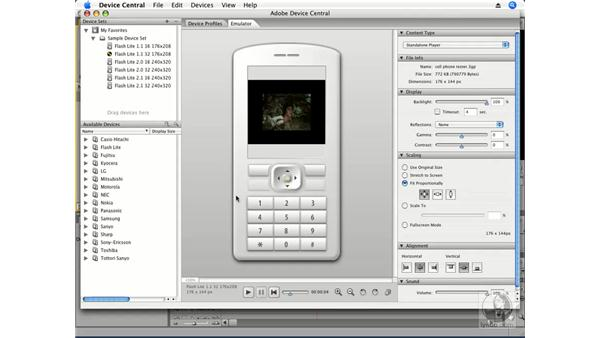 Exporting to an iPod or other device: Premiere Pro CS3 Essential Training
