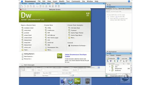 Understanding client-side form validation: Dreamweaver CS3 Dynamic Development