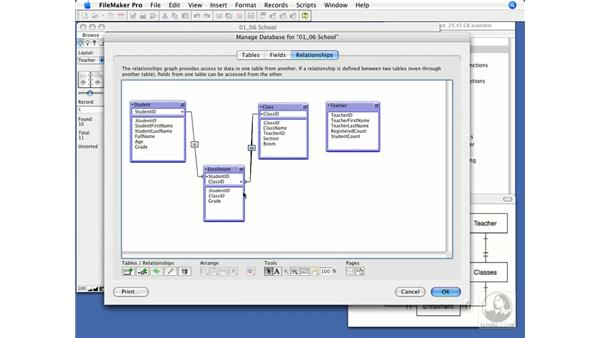 Comparing the Relationship Graph and ERD: FileMaker Pro 9 Beyond the Basics