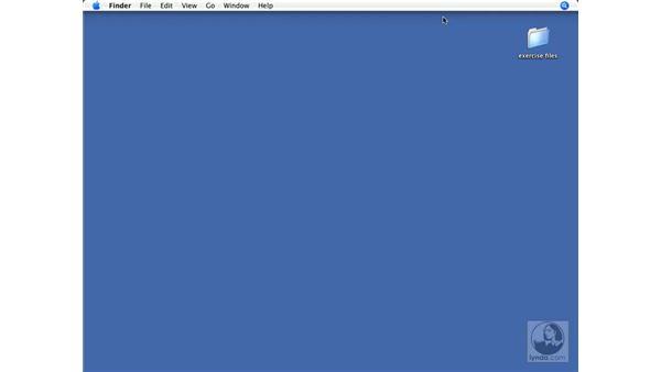 Scripting for developers: FileMaker Pro 9 Beyond the Basics