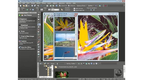 Scanning multiple items: Getting Started with Corel Paint Shop Pro Photo X2