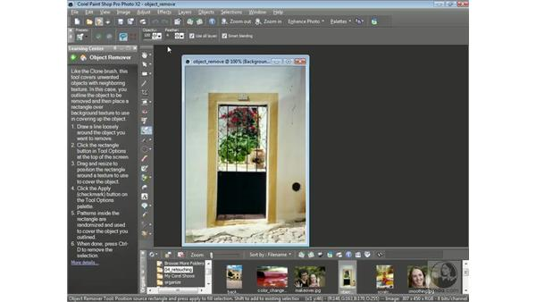 Removing entire objects: Getting Started with Corel Paint Shop Pro Photo X2