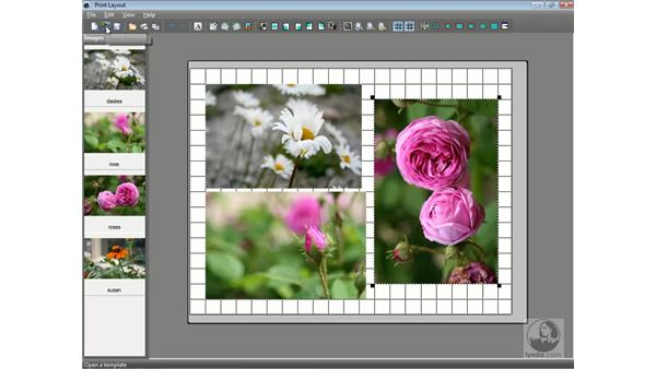 Printing multiple photos: Getting Started with Corel Paint Shop Pro Photo X2