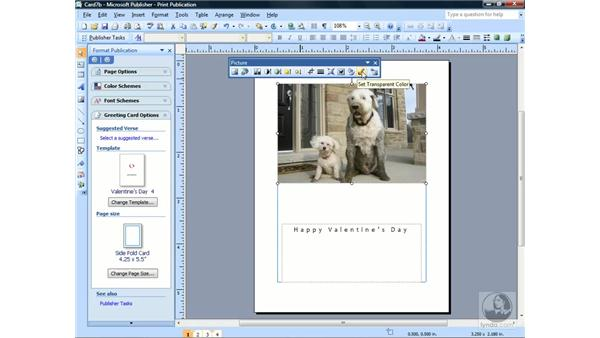 Using the Picture toolbar: Publisher 2007 Essential Training