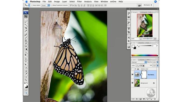 Advanced color saturation : Photoshop CS3 Creative Photographic Techniques