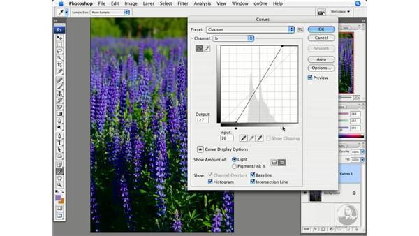 Advanced saturation with Lab: Photoshop CS3 Creative Photographic Techniques