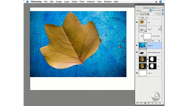 Blend modes and Shadow Tint: Photoshop CS3 Creative Photographic Techniques