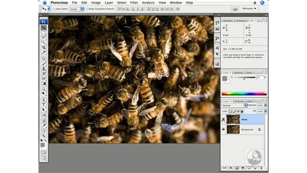 Advanced edge sharpening with High Pass part 2 - Beehive: Photoshop CS3 Creative Photographic Techniques
