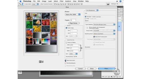 Photoshop Print dialog settings: Photoshop CS3 Creative Photographic Techniques