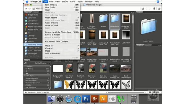 Using Bridge favorites: Photoshop CS3 Prepress Essentials
