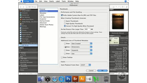 Customizing Bridge preferences: Photoshop CS3 Prepress Essentials