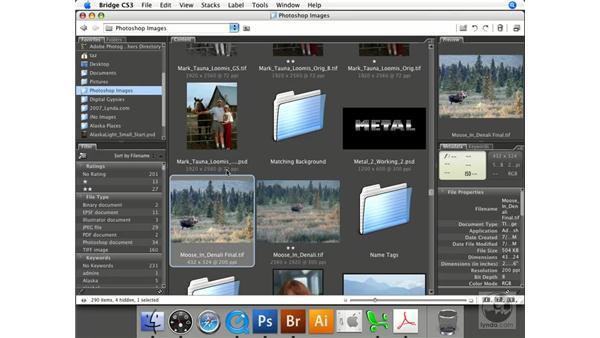 Navigating files and accessing metadata: Photoshop CS3 Prepress Essentials
