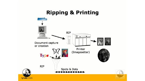 Ripping: Photoshop CS3 Prepress Essentials