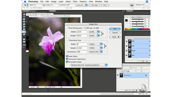 Linear and dimensional adjustments: Photoshop CS3 Prepress Essentials
