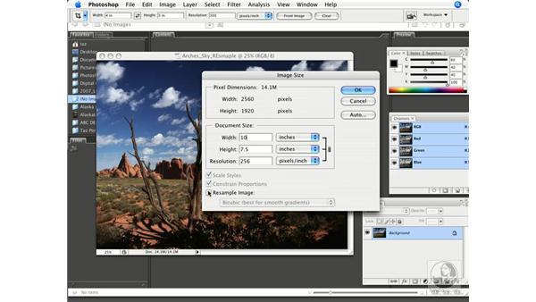 Adjusting digital camera resolution: Photoshop CS3 Prepress Essentials