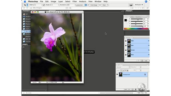 Cropping, resizing, and resampling images: Photoshop CS3 Prepress Essentials