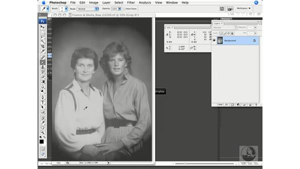 Histograms, Curves, and the Info palette: Photoshop CS3 Prepress Essentials