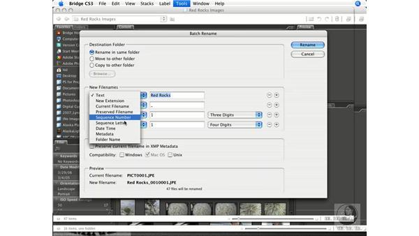 Batch renaming with Bridge: Photoshop CS3 Prepress Essentials