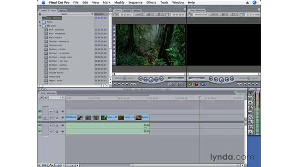 Navigating in Final Cut Pro 6: Final Cut Pro 6 Essential Editing