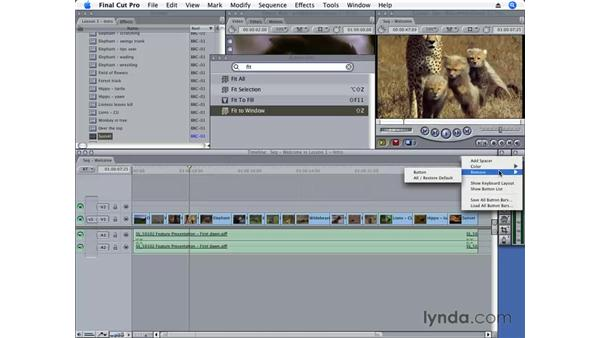 Customizing timelines, buttons, labels, and the keyboard: Final Cut Pro 6 Essential Editing