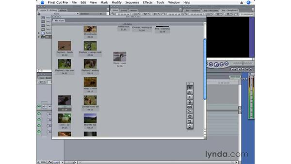 Storyboard editing: Final Cut Pro 6 Essential Editing