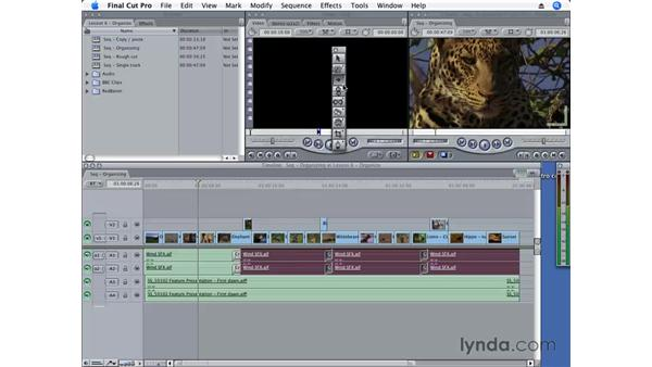 Selecting clips: Final Cut Pro 6 Essential Editing
