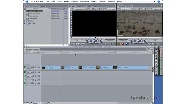 Applying multiple transitions at once: Final Cut Pro 6 Essential Editing