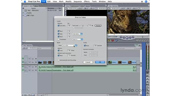Printing to video: Final Cut Pro 6 Essential Editing
