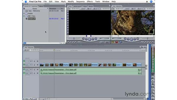 Importing files and folders: Final Cut Pro 6 Essential Editing