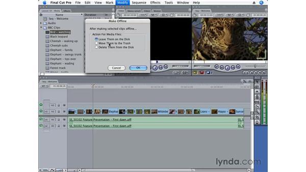 Making files go offline: Final Cut Pro 6 Essential Editing