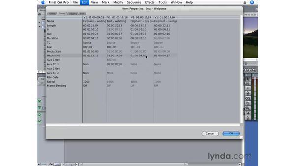 Editing Item Properties: Final Cut Pro 6 Essential Editing