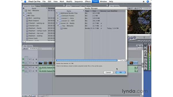 Using the Render Manager: Final Cut Pro 6 Essential Editing
