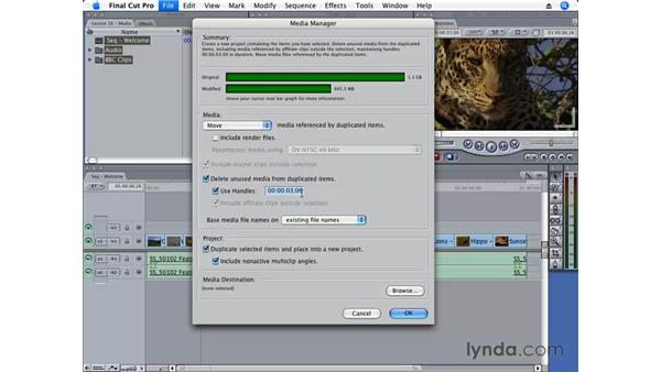 Using the Media Manager: Final Cut Pro 6 Essential Editing