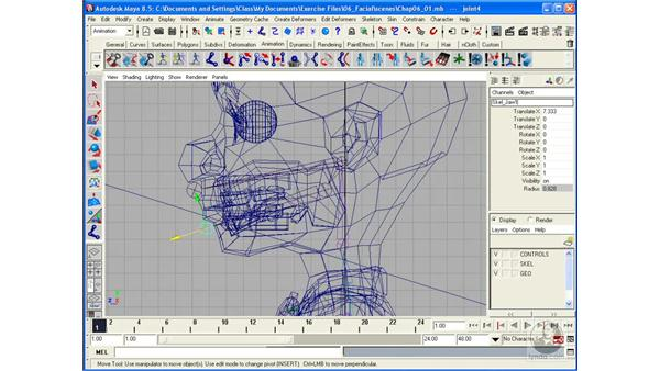 Creating a skeleton for the head: Maya 8.5 Character Rigging