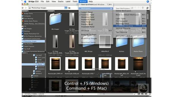 Using Bridge to access and sort files: InDesign CS3 Prepress Essentials