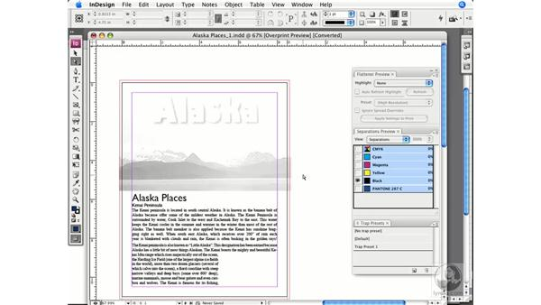 Checking separation with Separation Preview: InDesign CS3 Prepress Essentials
