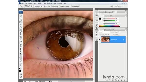 The automation tools: Photoshop CS3 Channels and Masks: The Essentials