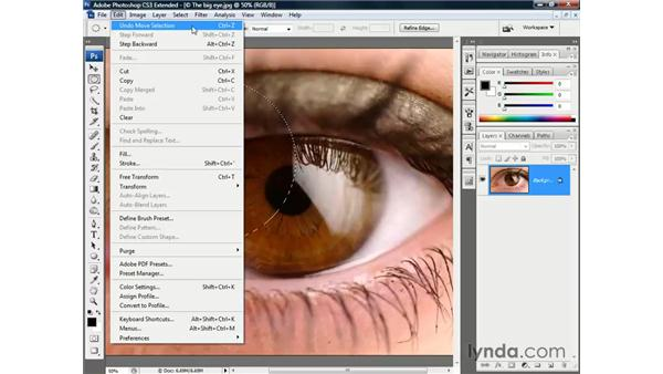 Modifying a selection outline: Photoshop CS3 Channels and Masks: The Essentials