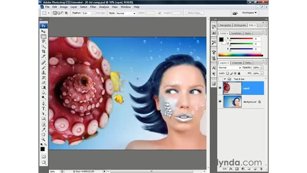 Testing a refined selection outline: Photoshop CS3 Channels and Masks: The Essentials