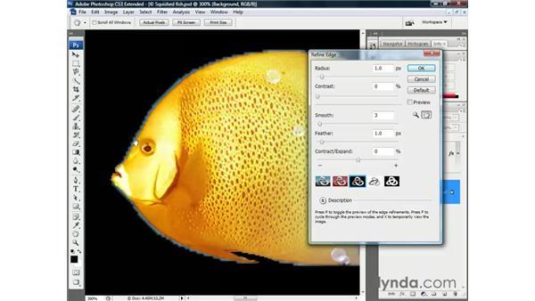 QS + ML + RE = success: Photoshop CS3 Channels and Masks: The Essentials