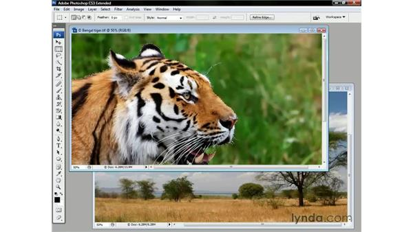 Why the Extract command erases pixels: Photoshop CS3 Channels and Masks: The Essentials