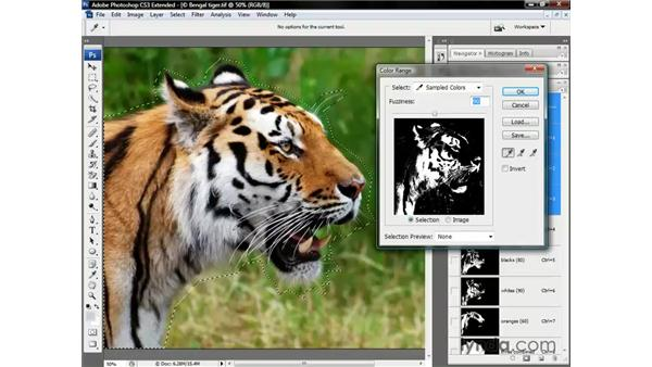 Masking a tiger (or another colorful animal): Photoshop CS3 Channels and Masks: The Essentials