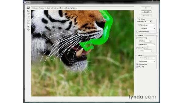 Using the Extract command: Photoshop CS3 Channels and Masks: The Essentials
