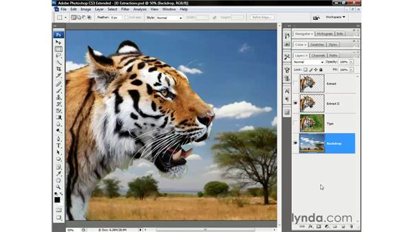 Shading an extracted image: Photoshop CS3 Channels and Masks: The Essentials