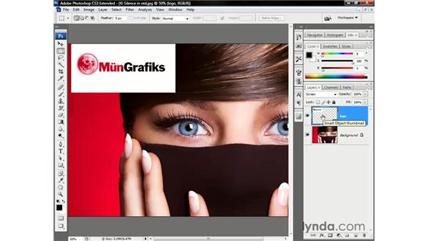 Invert and Screen: Photoshop CS3 Channels and Masks: The Essentials