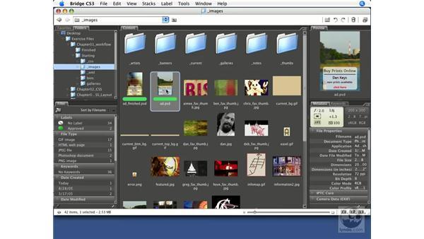 Using Bridge with Dreamweaver CS3: Dreamweaver CS3 Beyond the Basics