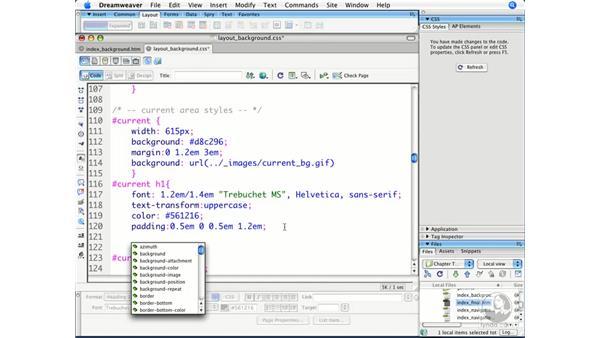 : Dreamweaver CS3 Beyond the Basics