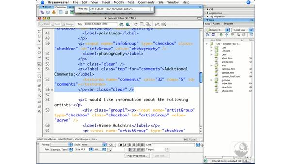 Creating properly structured forms: Dreamweaver CS3 Beyond the Basics